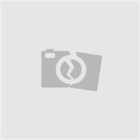 Bosch Oplader Pro Al 36100 Cv Li (Bosch, Al 36100 Cv) | Kruis.nl